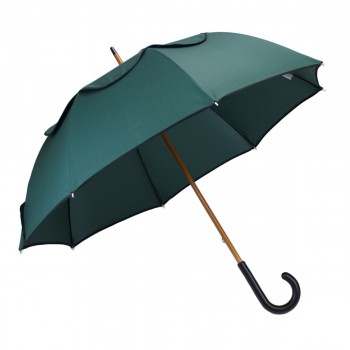 Umbrella Passvent green