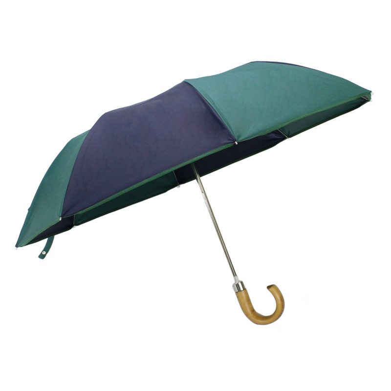 Classic green and blue automatic folding umbrella for men