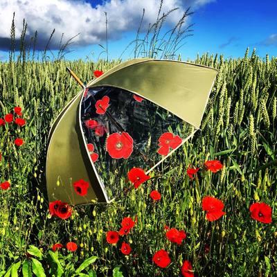 ☂️Parapluie☂️ Un coquelicot parmi des coquelicots 💐  Buy it ➡️ http://bit.ly/2MUYIbg #parapluie #coquelicot #umbrella #poppies #madeinfrance #normandie #h2oparapluies